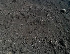 Ziemia ogrodowa, czarnoziem, Humus